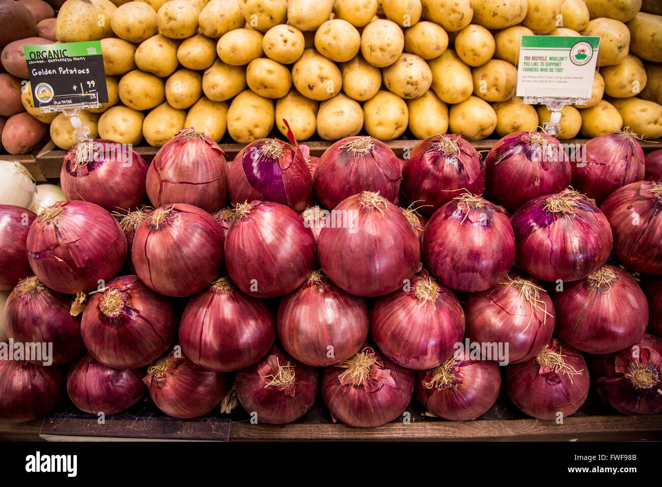 A Display Of Organic Potatoes And Red Onions In The Produce Section Of A  Grocery Store.