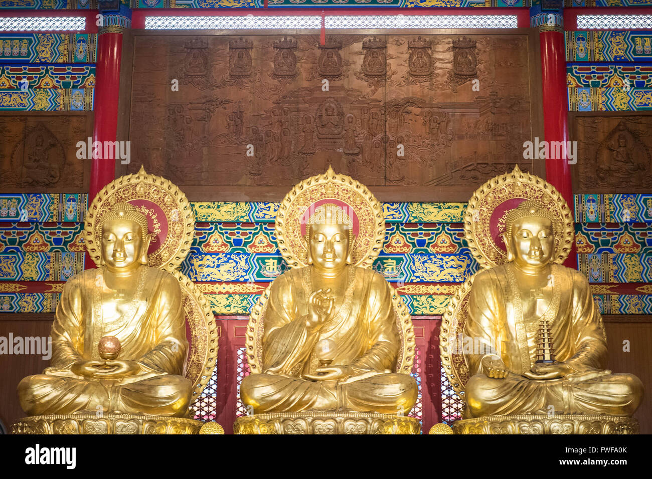 Three buddism - Stock Image