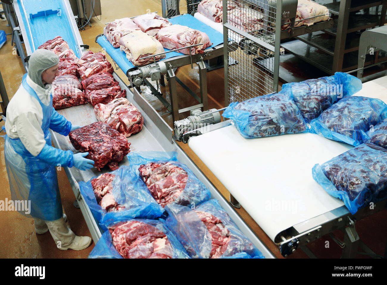 The largest meat-packing plants in Russia