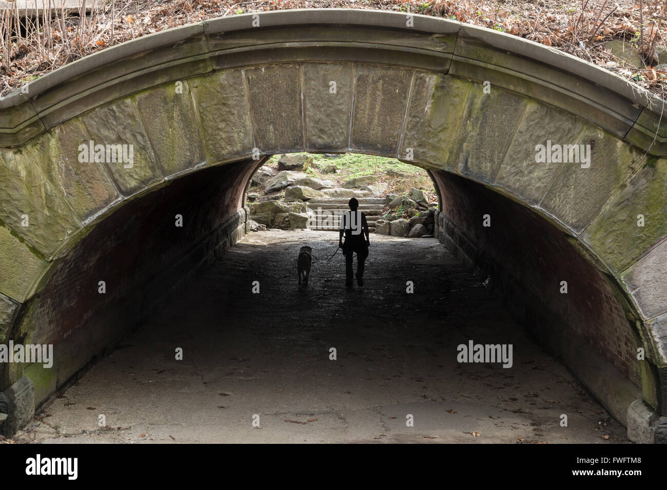 Woman walking her dog alone through an old dark tunnel in Central Park, New York City, during the daytime - Stock Image