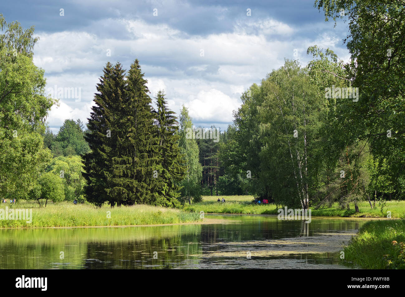 Summerly a suburban landscape with a pond. Stock Photo