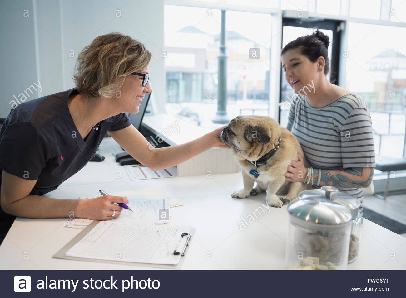 Veterinarian greeting woman with dog at clinic reception - Stock Image