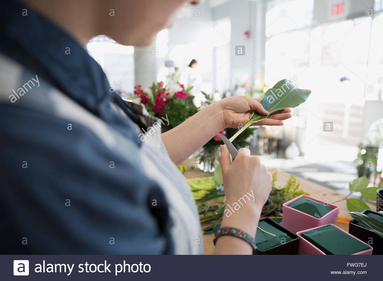 Florist trimming stems in flower shop - Stock Image