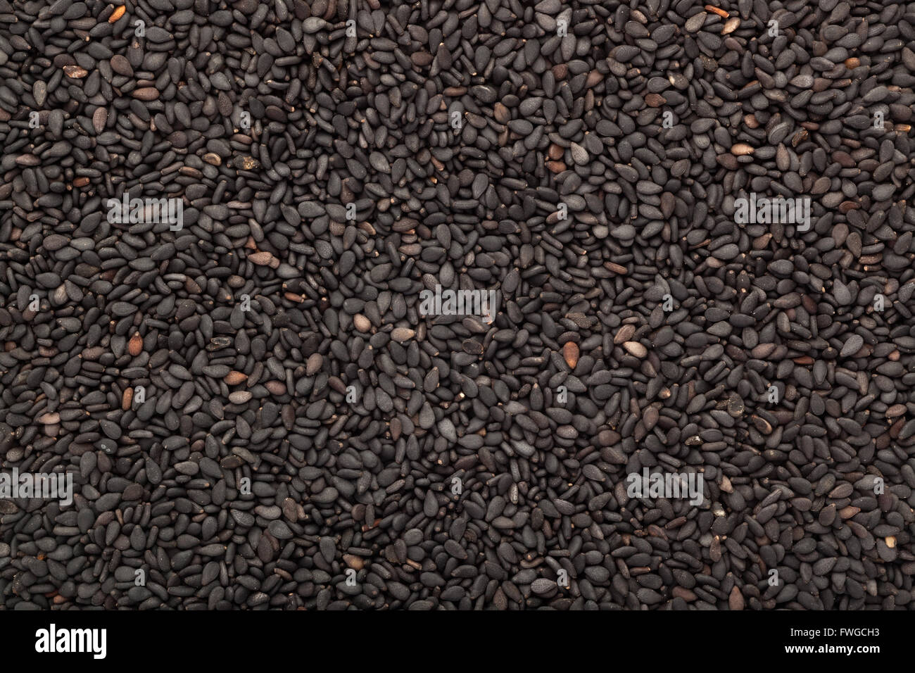 Closeup of lots of black sesame seeds - Stock Image