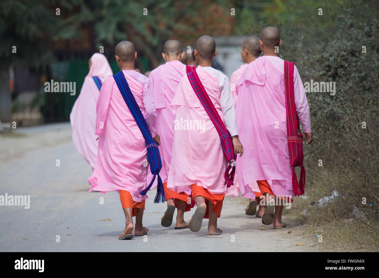 Buddhist nuns in traditional robes, Sagaing, Myanmar (Burma), Southeast Asia - Stock Image