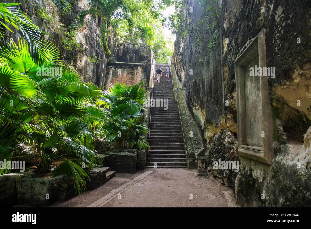 Queen's StaircaseNassau, New Providence, Bahamas, Caribbean - Stock Image
