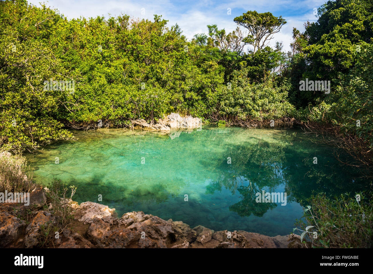 Sinkhole in the blue hole park, Bermuda, North America - Stock Image