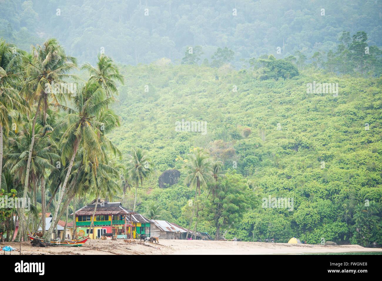Sungai Pinang, West Sumatra, Indonesia, Southeast Asia - Stock Image