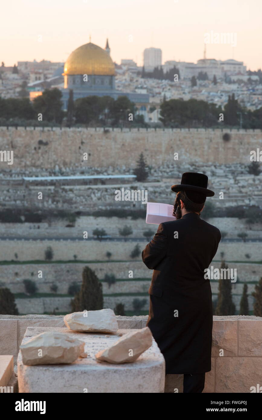 Orthodox Jew praying at Mount of Olives cemetery, Jerusalem, Israel, Middle East - Stock Image