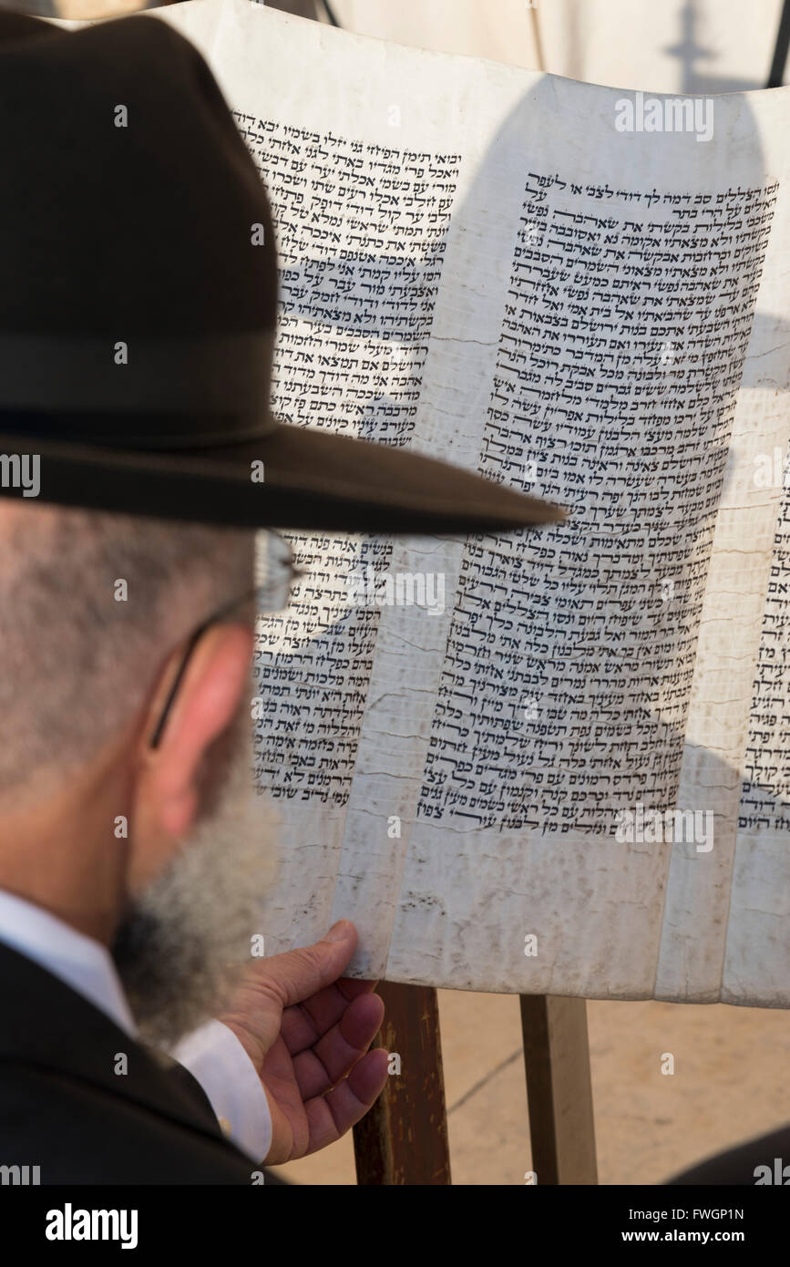 Jew reading from a Torah scroll, Western Wall, Jerusalem Old city, Israel, Middle East - Stock Image