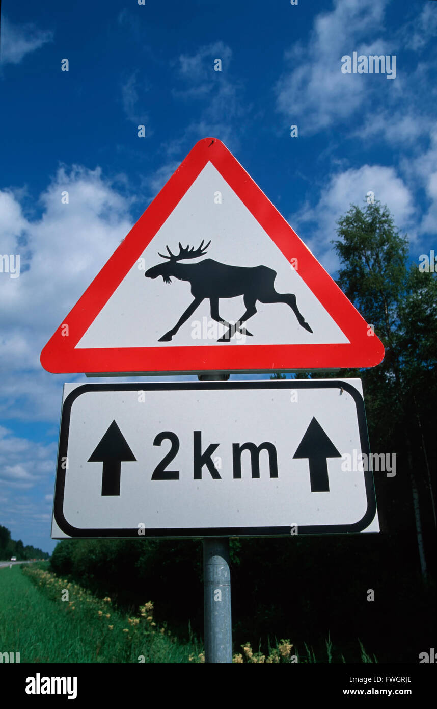Elk warning traffic sign, Estonia, Europe Stock Photo