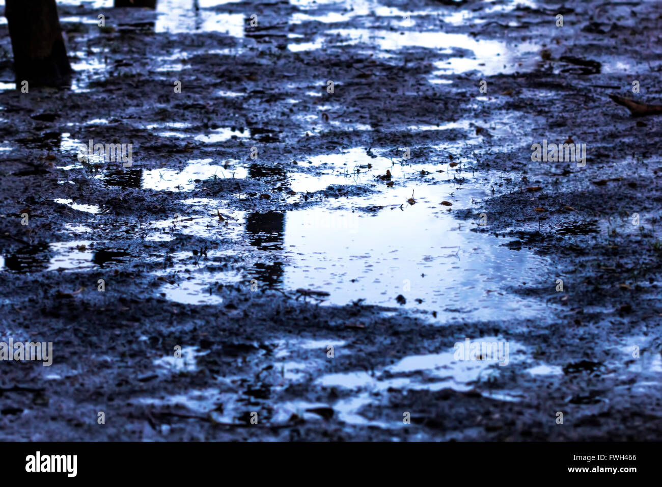 Slush and mud on road at cloudy evening - Stock Image