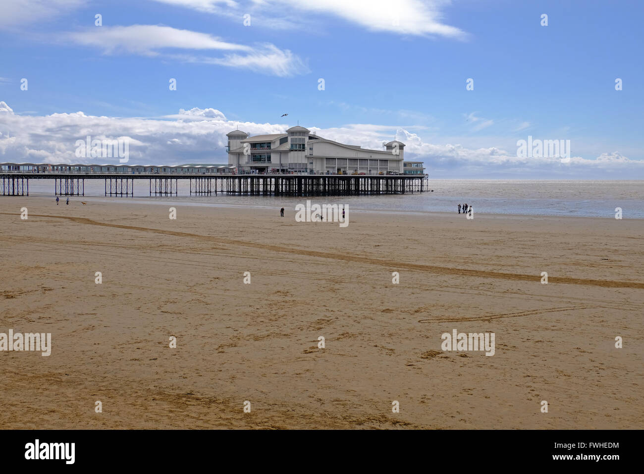 Weston-super-Mare, UK. 12th June, 2016. UK weather: dog walkers on the beach on a sunny, but windy afternoon. Credit: Stock Photo