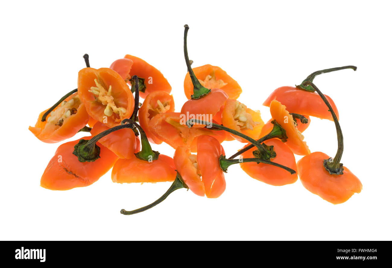 Sliced orange habanero peppers showing the tops and stems isolated on a white background. - Stock Image