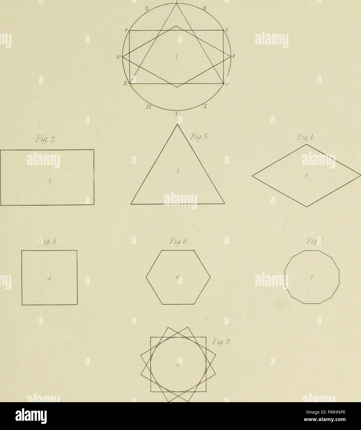 The natural principles and analogy of the harmony of form (1842) - Stock Image