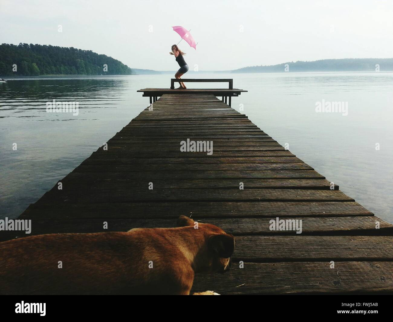 Woman With Umbrella Standing On Pier By Lake With Dog Resting In Foreground Stock Photo