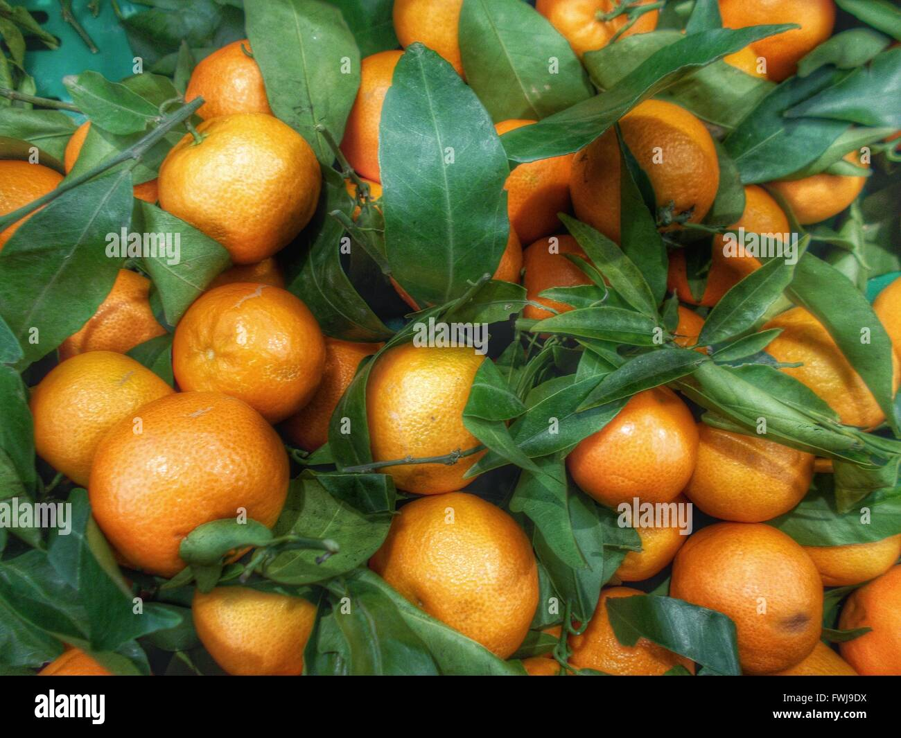 Full Frame Shot Of Oranges With Leaves For Sale At Market - Stock Image