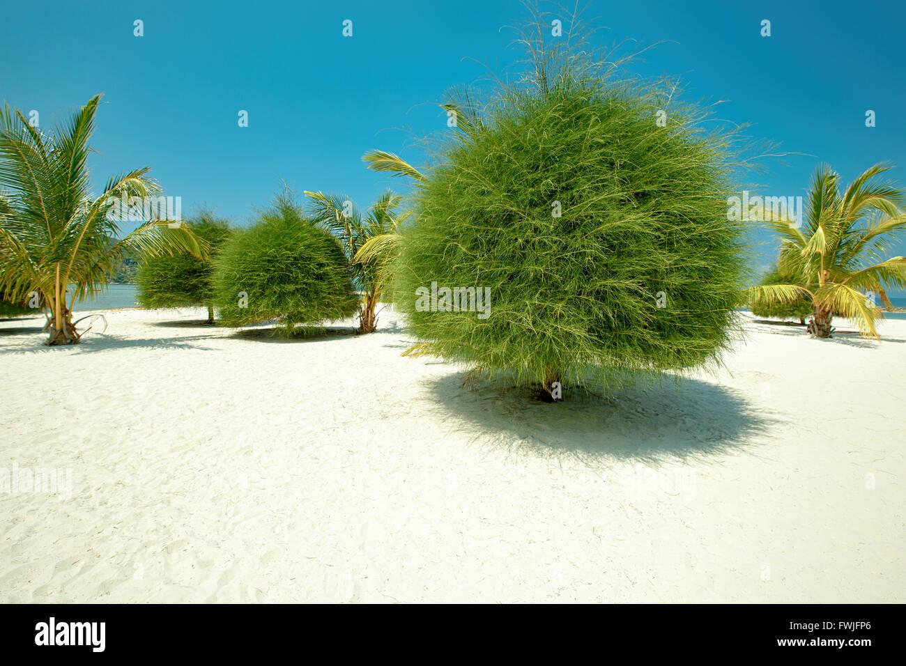 Scenic Malibu beach on Koh Phangan, Thailand - Stock Image
