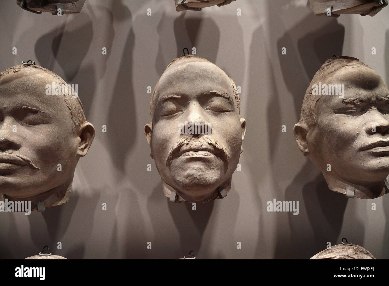 Facial casts of Nias islanders (after 1910) made of plaster on display in the Rijksmuseum, Amsterdam, Netherlands. - Stock Image