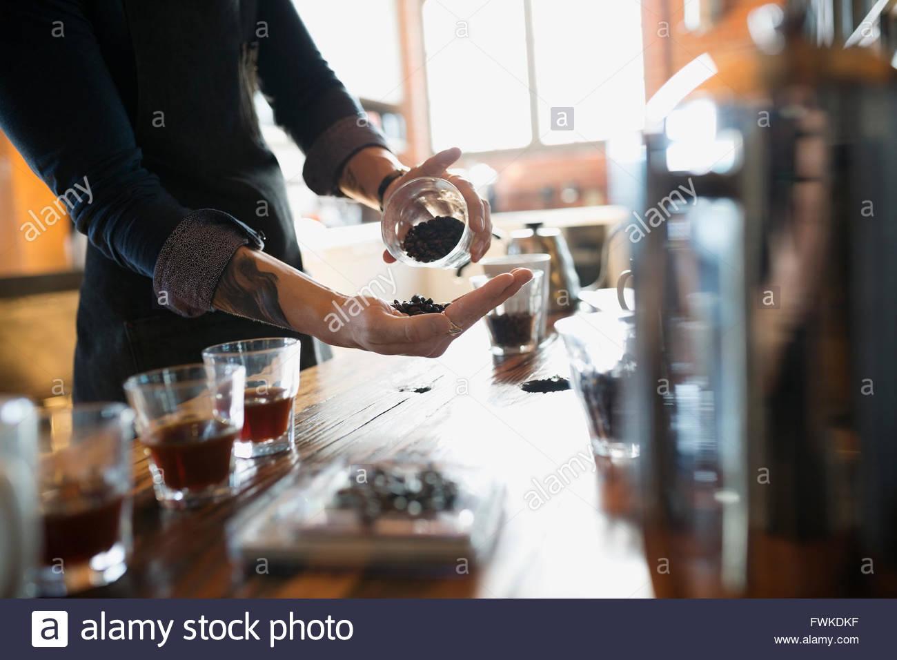 Entrepreneurial coffee roaster examining beans - Stock Image
