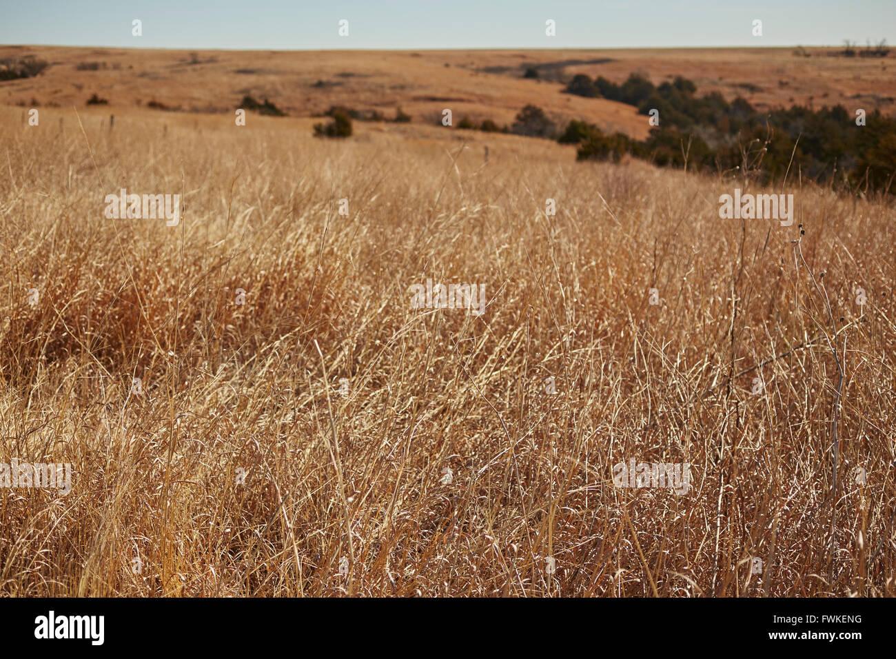 Ranch land near Elk City, Oklahoma, USA Stock Photo