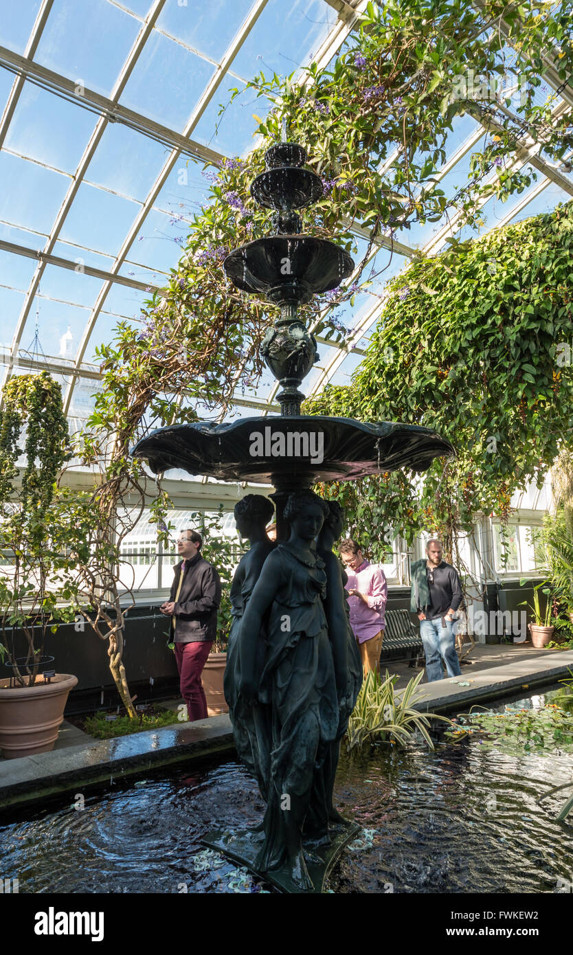 Inside Enid A. Haupt Conservatory at New York Botanical Garden with water fountain in an ornamental pond and vines - Stock Image