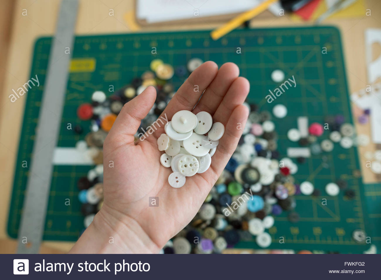 Overhead view craftswoman cupping white buttons - Stock Image