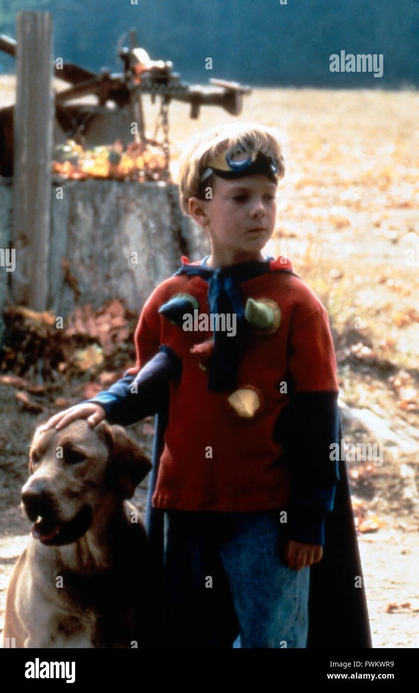 Far from Home: The Adventures of Yellow Dog, aka: Gefährliche Wildnis, USA 1995, Regie: Phillip Borsos, Darsteller: - Stock Image