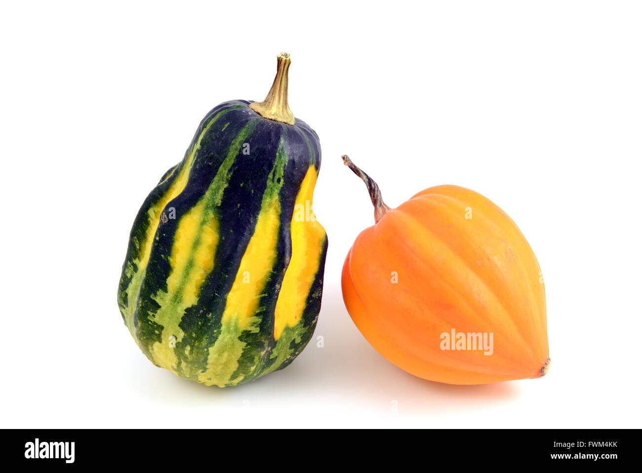 Pumpkins Against White Background - Stock Image
