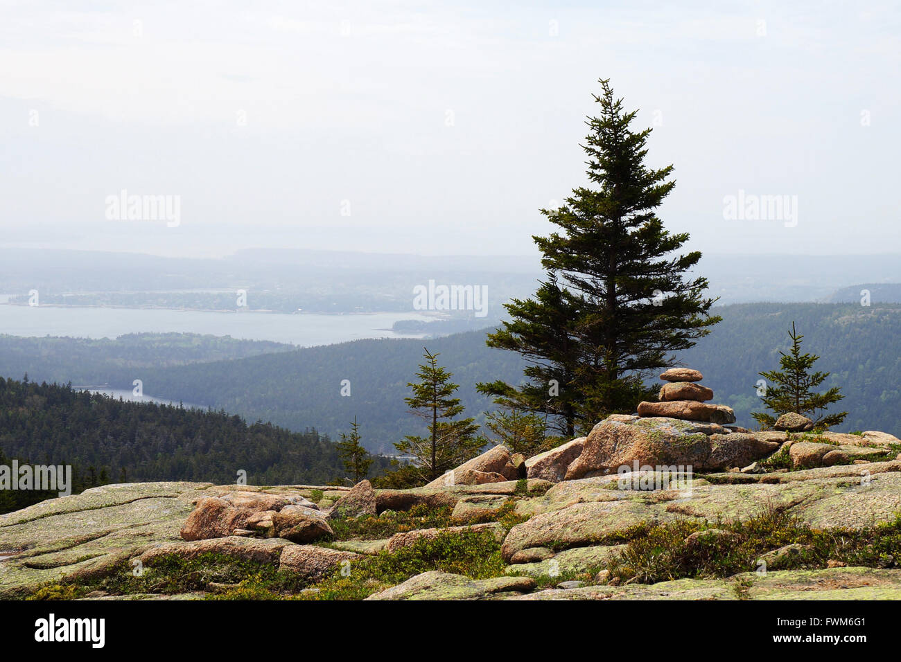 Landscape with spruces, boulders, remote forest and water in a haze. - Stock Image