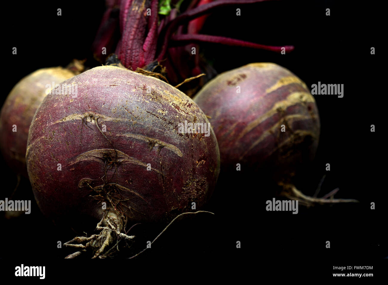 Beetroot on a black background. - Stock Image
