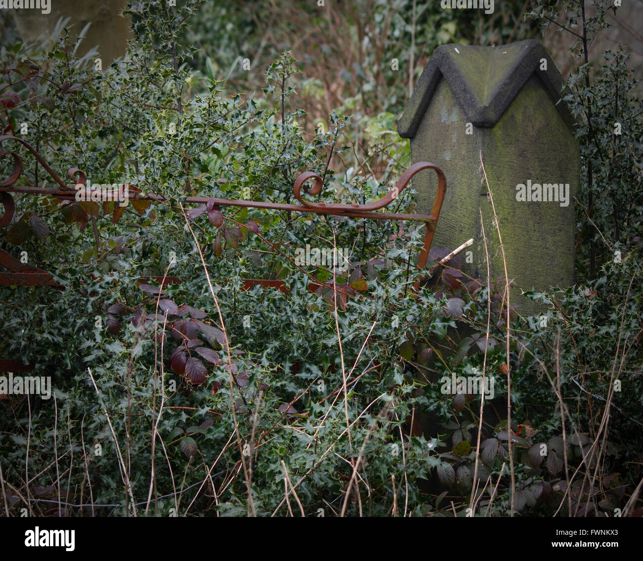 A rusty iron gate is slowly submerged in undergrowth. Stock Photo