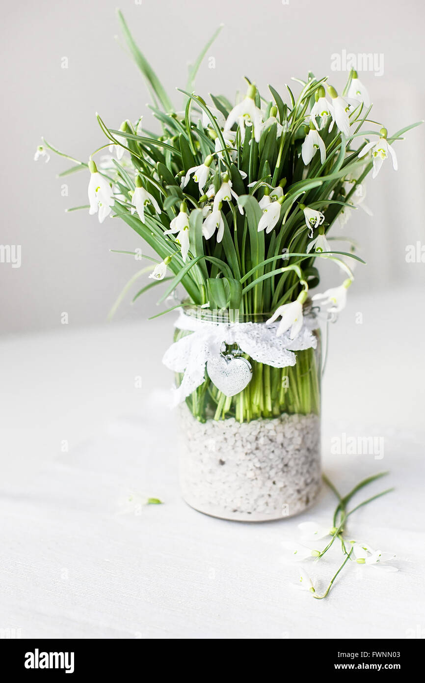 Beautiful Snowdrop Flowers In A Transparent Vase With Lace Ribbon And Small Heart On White Table
