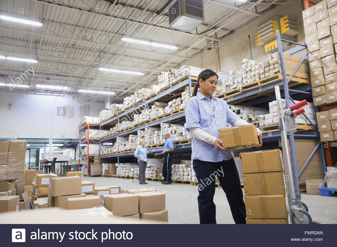 Female worker stacking boxes in warehouse Stock Photo