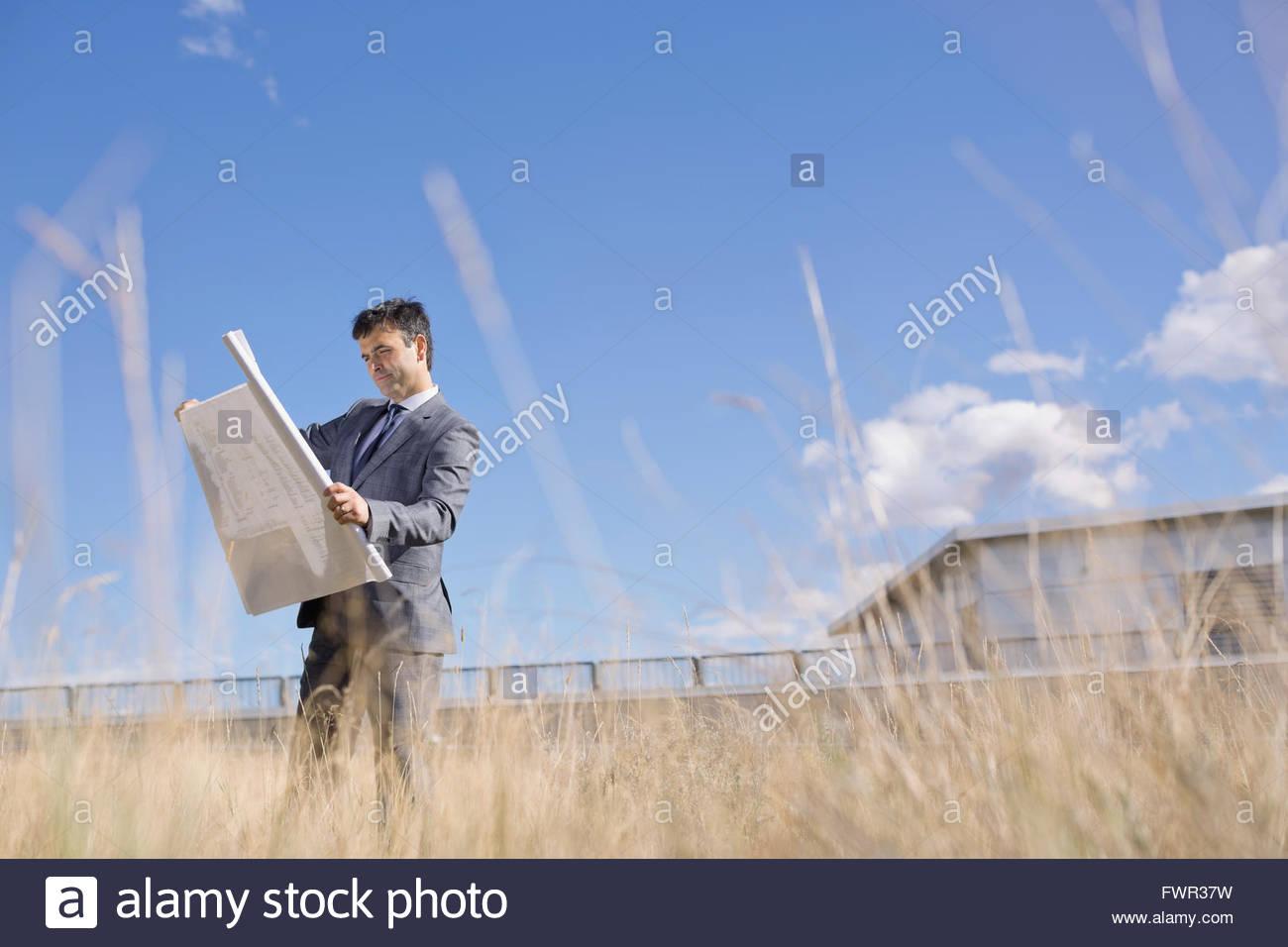 Businessman analyzing blueprint in field - Stock Image