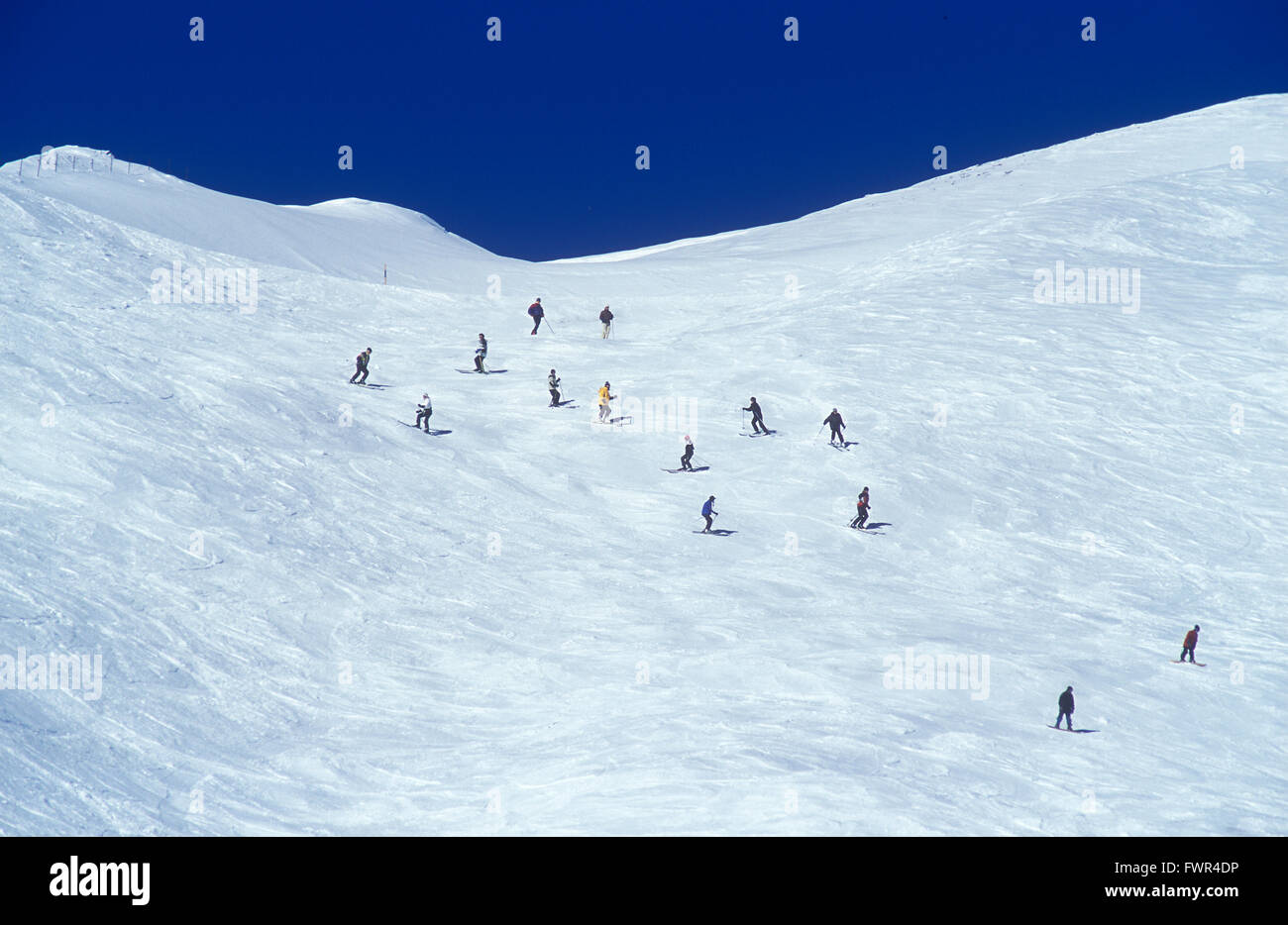Tracked out off piste - Stock Image