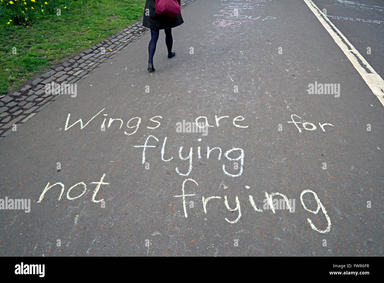 Messages written in chalk on the ground by supporters of Animal Liberation, by the Meadows in Edinburgh, Scotland, Stock Photo