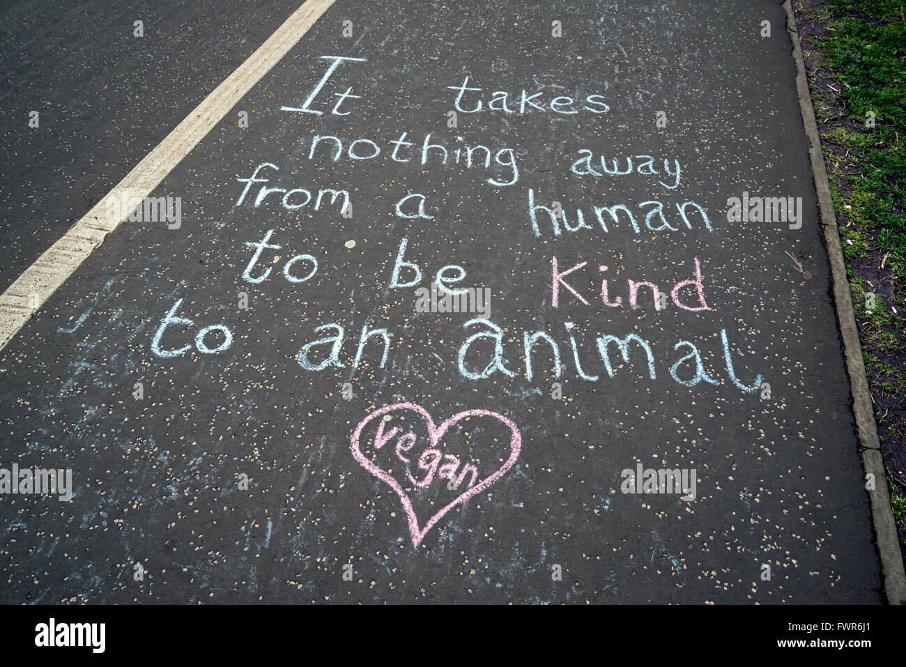 Messages written in chalk on the ground by Animal Liberation supporters, near the Meadows in Edinburgh, Scotland, Stock Photo
