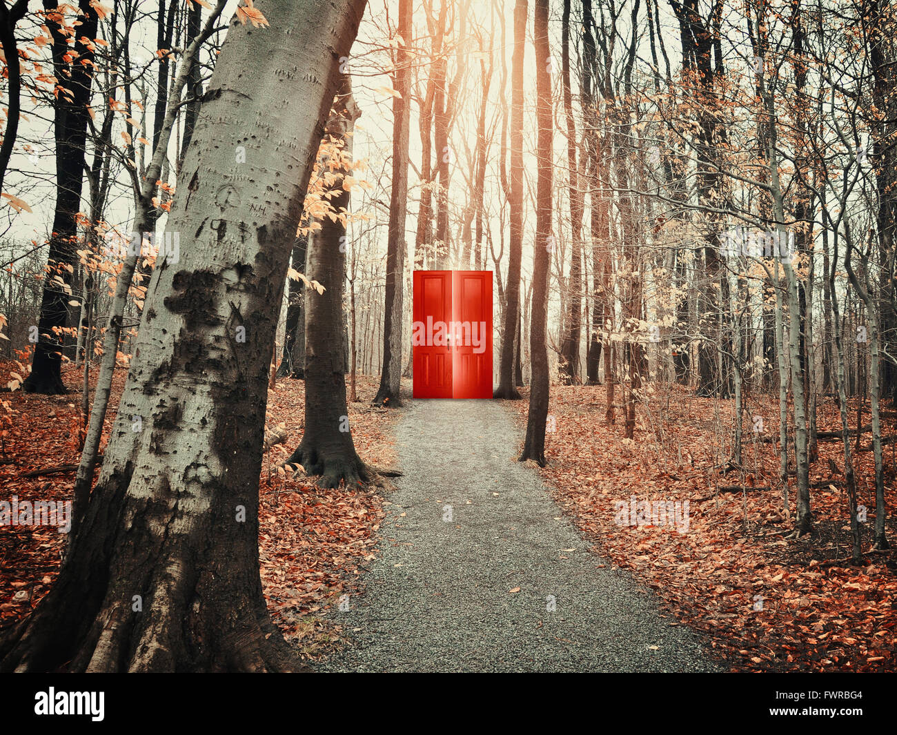 A view of a rocky path trail in the fall forest with bare trees of a glowing red door for a freedom, risk or decision - Stock Image
