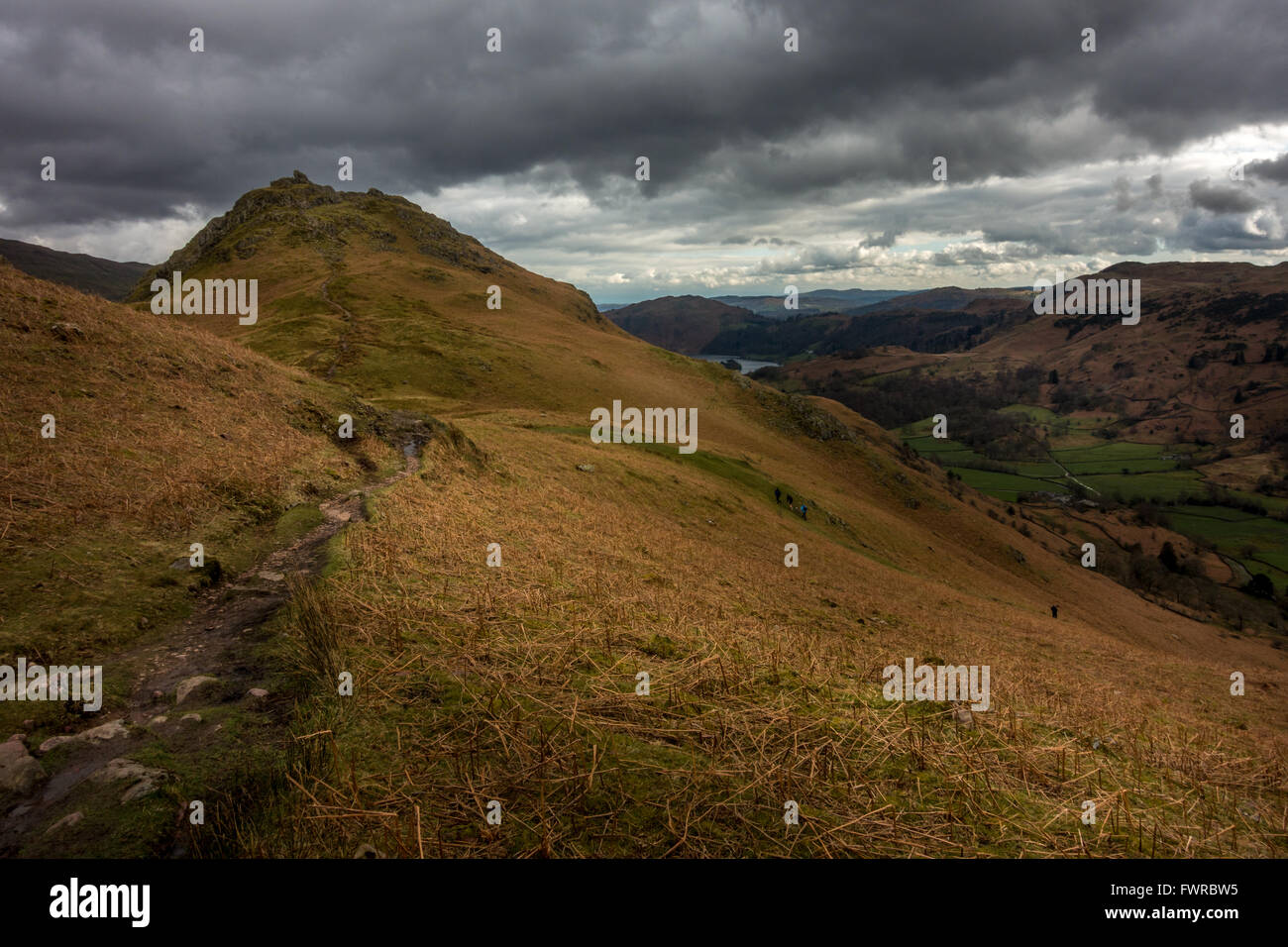 Path looking towards Helm Crag (The Lion and the Lamb) and Grasmere from Gibson's Knott, The Lake District, - Stock Image
