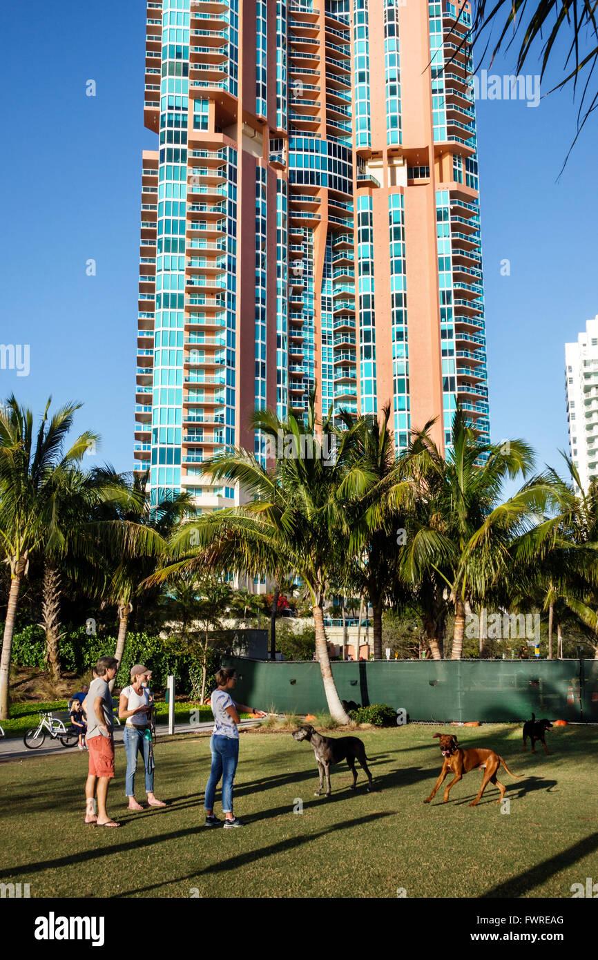 Florida FL Miami Beach South Pointe Park dog run pet owners Portofino Tower high rise condominium building - Stock Image
