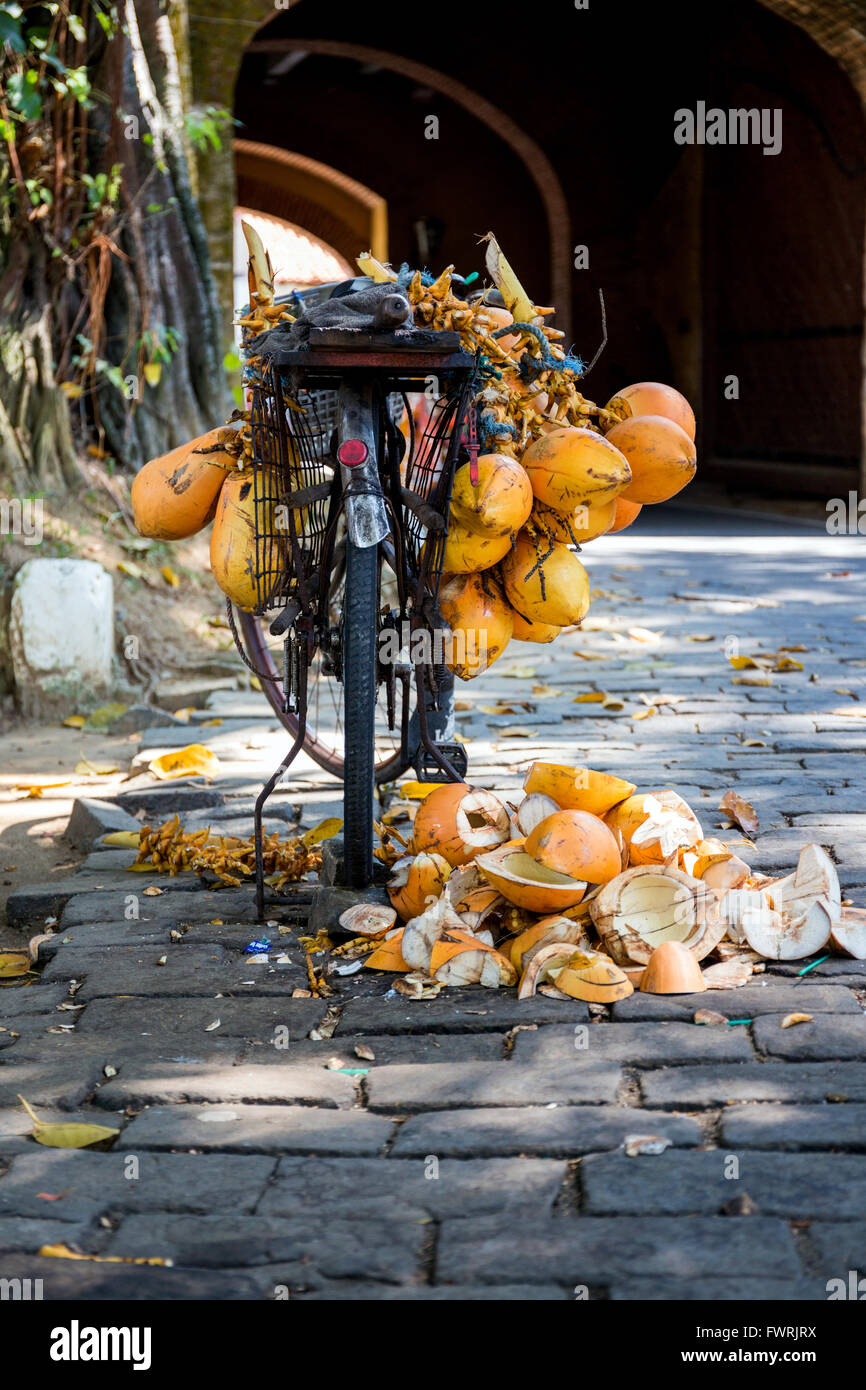 coconut vendor in Fort Galle, Sri Lanka, Asia Stock Photo
