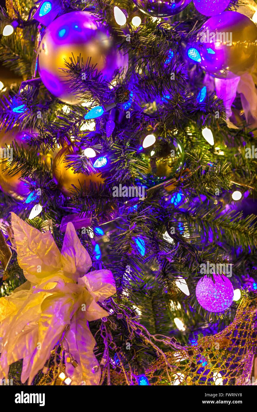 Traditional Hawaiian Christmas Tree Hawaii Stock Photos
