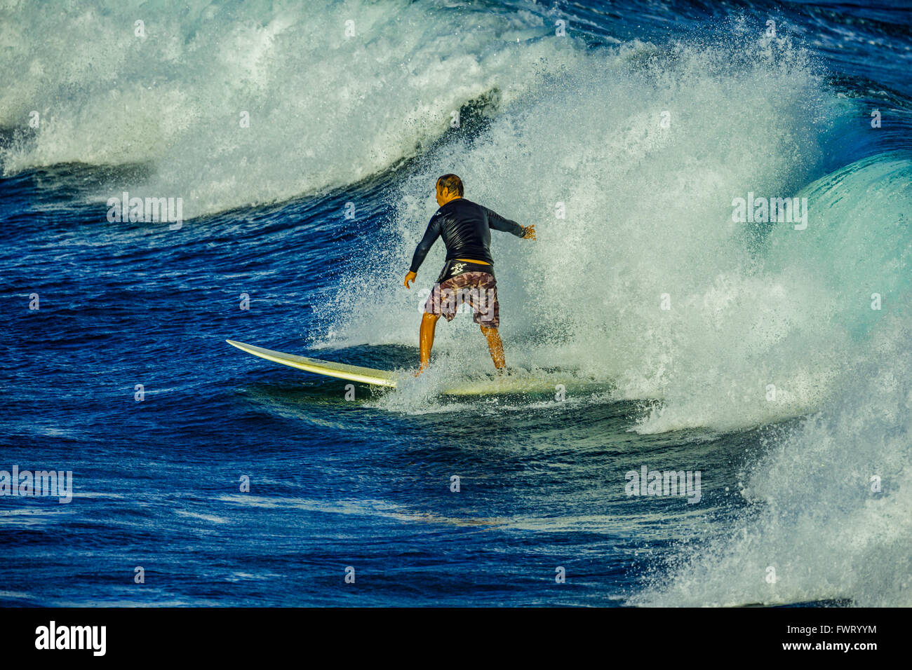 Surfing in Maui - Stock Image