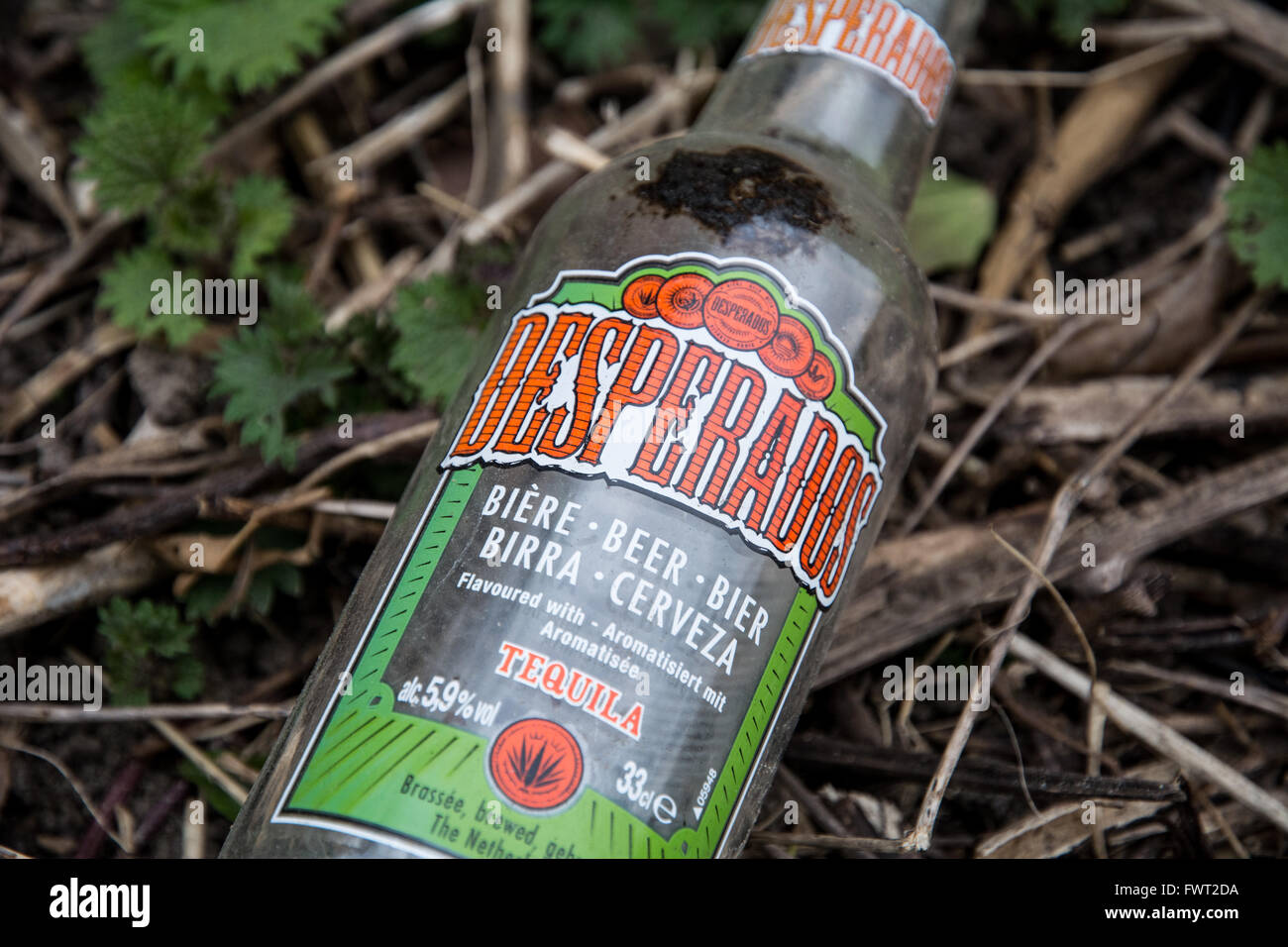 An Empty Desperados Beer Bottle Thrown Into A Bush On The Side Of The Stock Photo Alamy