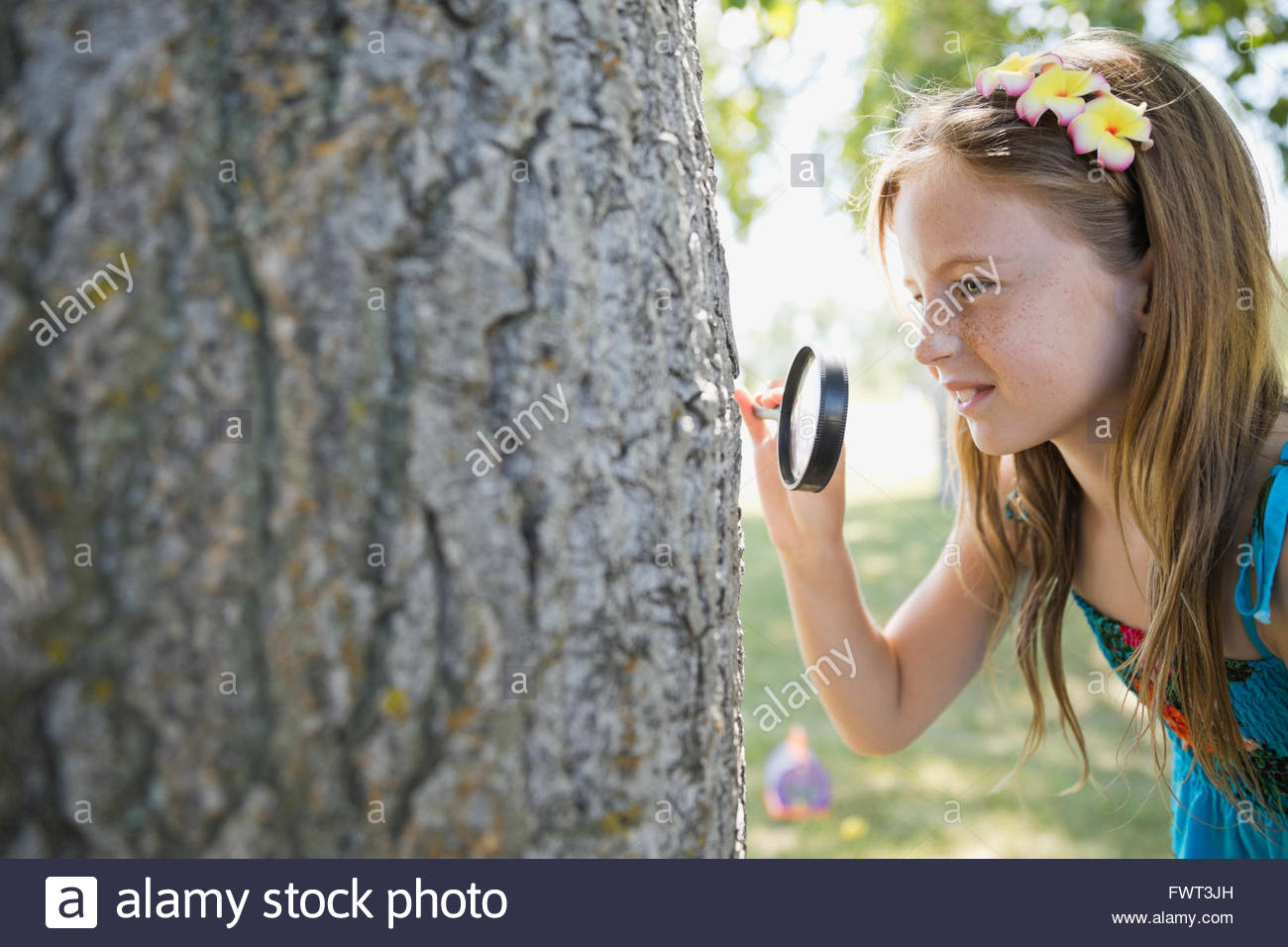 Little girl looking at tree bark through magnifying glass - Stock Image