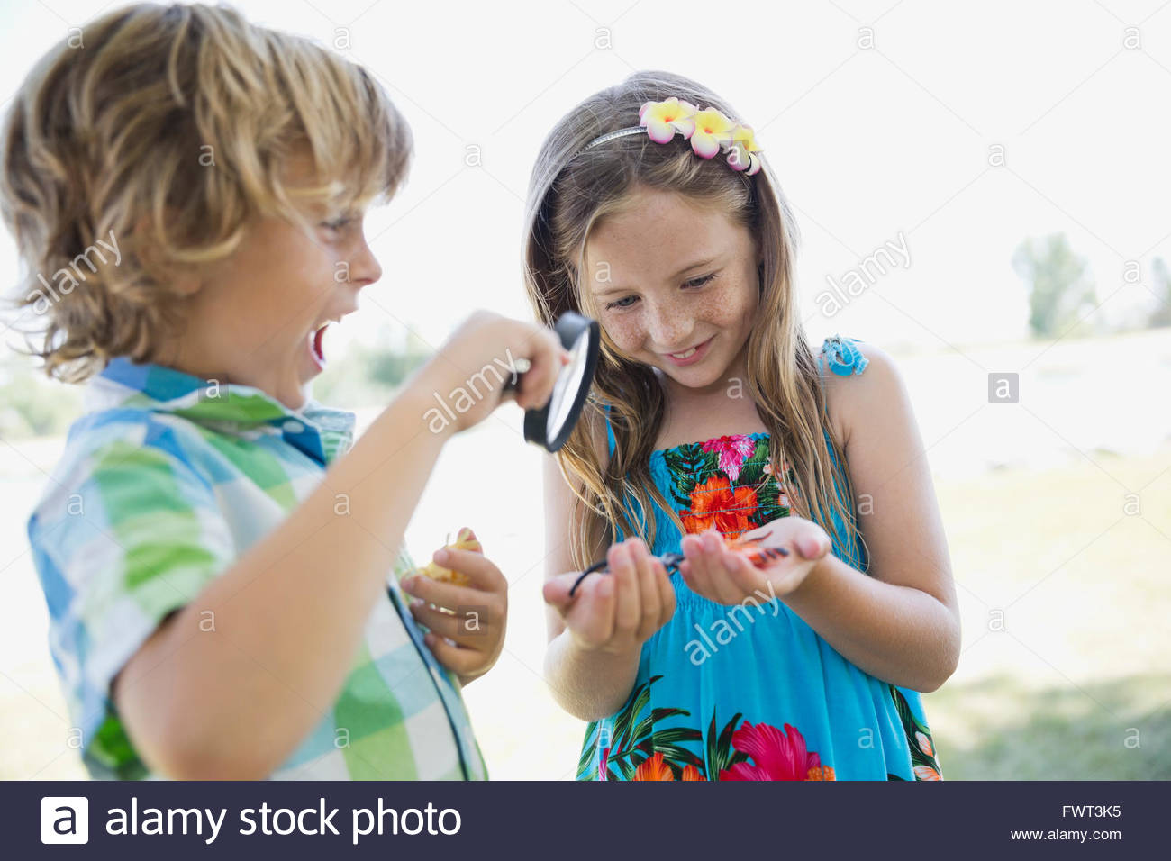 Siblings examining insects with magnifying glass Stock Photo