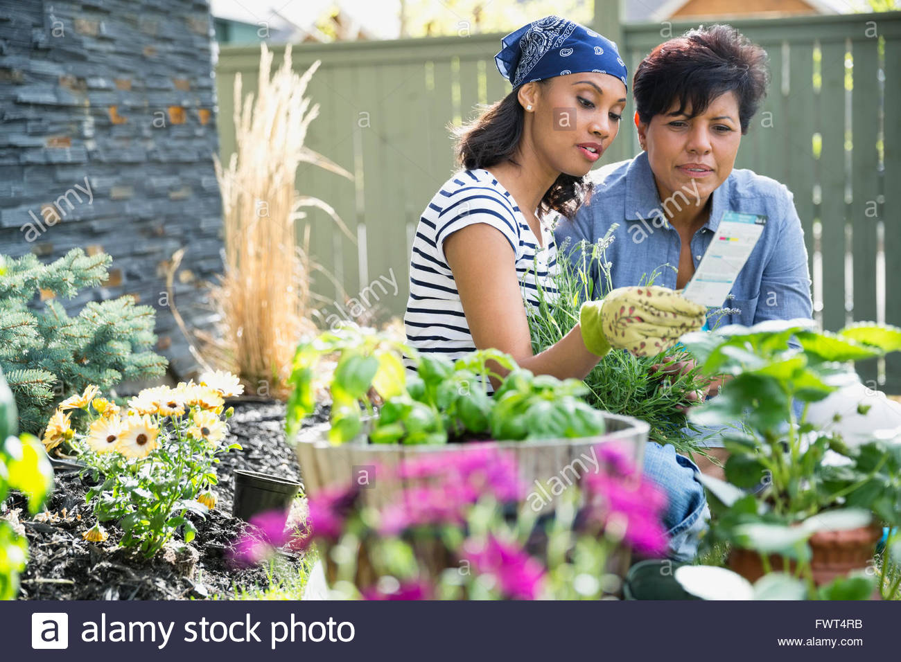 Mother and daughter reading instruction label while gardening - Stock Image