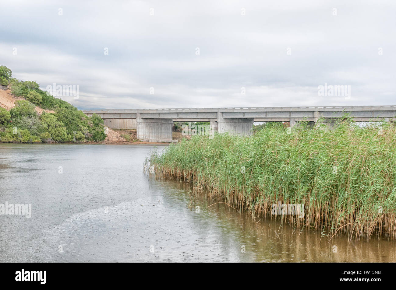 The N2 highway bridge over the Sundays River at Colchester in the Eastern Cape Province of South Africa - Stock Image