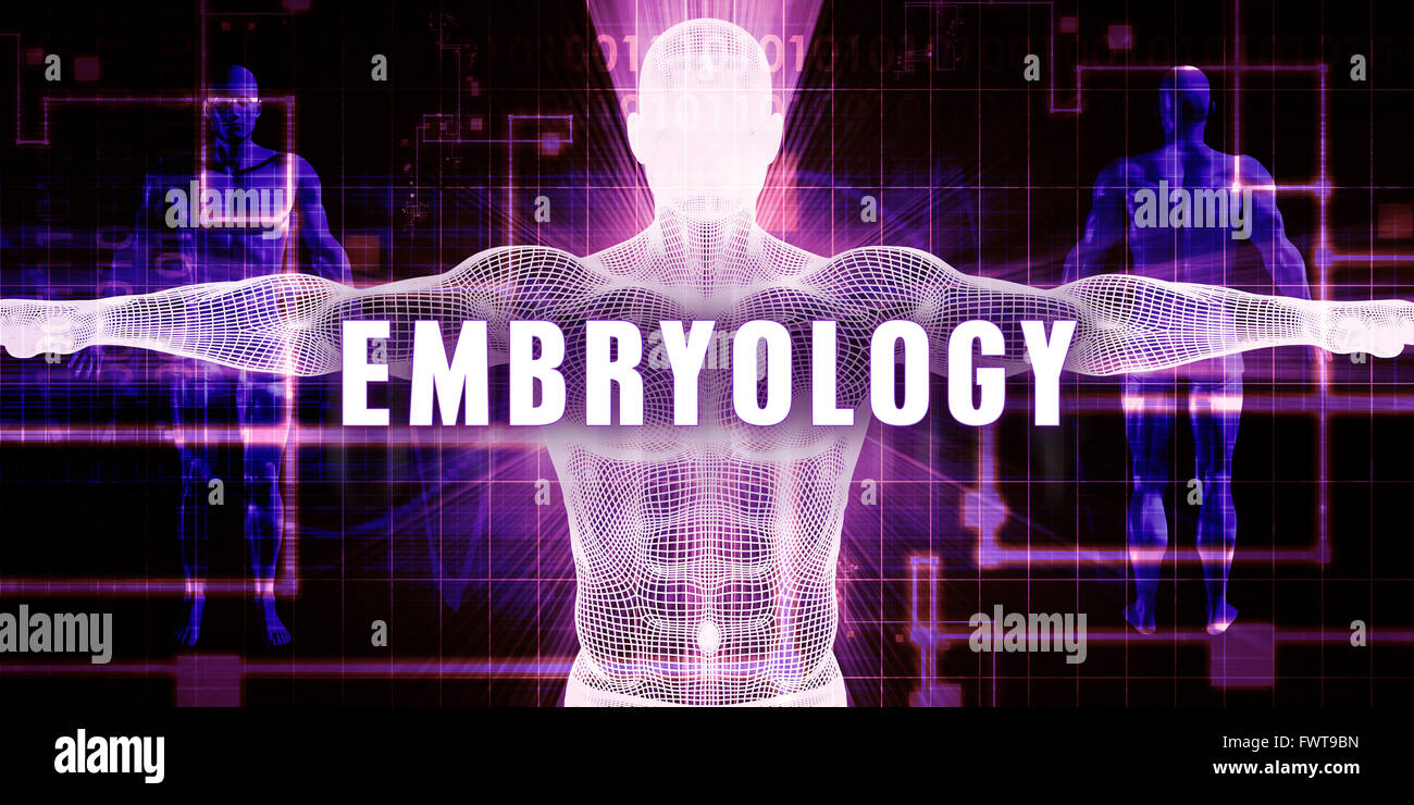 Embryology as a Digital Technology Medical Concept Art - Stock Image